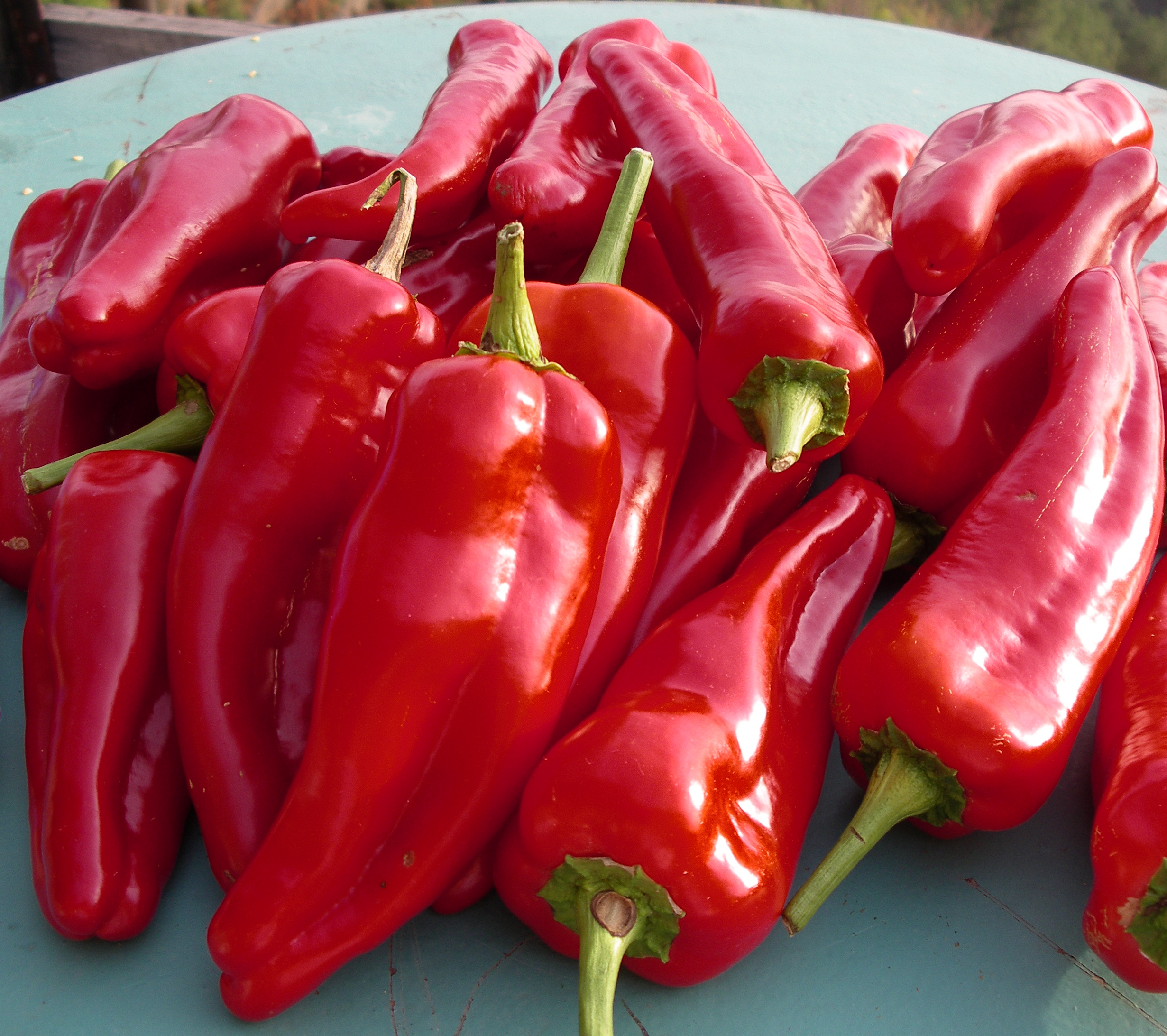 What varieties of sweet pepper can be grown in a home garden and how 44