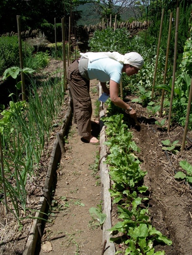 Laura tending the raised beds